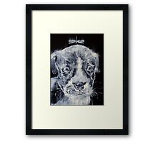 PIT BULL CUB AND DRAGONFLY Framed Print