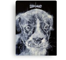 PIT BULL CUB AND DRAGONFLY Canvas Print