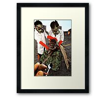 A Delicate Balancing Act Framed Print