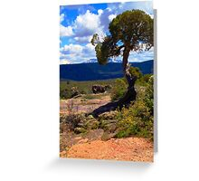 Utah Juniper at the Black Canyon Greeting Card