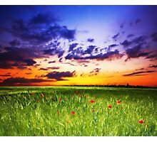 Peace Land Photographic Print