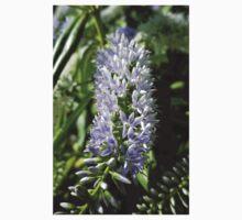 LAVENDER BLUE HEBE FLOWERS Kids Tee