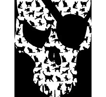 skull and cats  Photographic Print