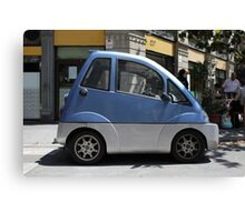 car for disabled Canvas Print
