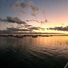 Sunset Lake Macquarie, New South Wales, Australia by Littlebirdy73