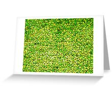 Graphic, Paint Chips, Green (Texture, Background) Greeting Card