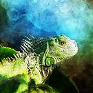 Blue And Green Iguana Profile by Phil Perkins