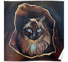 Cat's in the Bag Poster