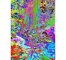 Psychedelic Forest Stream Photographic Print
