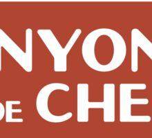 Canyon de Chelly National Monument sign Sticker