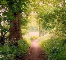 Follow my dreams!! Path to Fairyland!  by ienemien