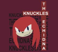 Knuckles the echidna by MateusFerreira