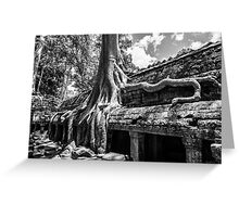 The Trees of Ta Prohm Greeting Card