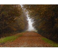 Fog On A Country Road Photographic Print