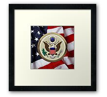 U.S.A.  - The Great Seal over American Flag Framed Print