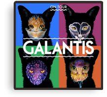 galantis gig poster Canvas Print