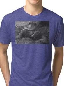 Mother And Baby Elephant Seals Tri-blend T-Shirt