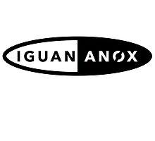 Iguananox Gym by typeo