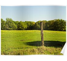 Prairie Pasture Poster