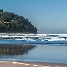 The Beautiful Pacific by Susan Vinson