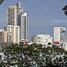 Sydney City Scape (1) by Wolf Sverak