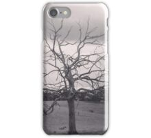 An old tree with tales to tell iPhone Case/Skin