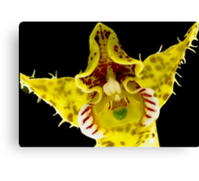 Hip Hop - Orchid Alien Discovery Canvas Print