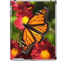 Orange Drift Monarch Butterfly iPad Case/Skin