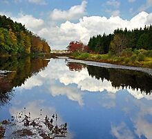 Long Pond Cloud Reflection Landscape by Christina Rollo