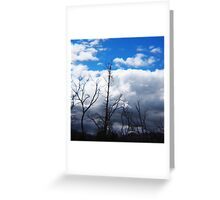 Blue Sky, Fluffy Clouds, Burnt Trees - View from South Mountain Road, Wallan, Vic, Australia Greeting Card