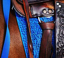 Riding Tack by Laurie Minor