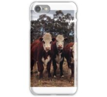 Herd of funny cattle iPhone Case/Skin
