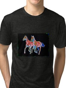Pair of Painted Horses Tri-blend T-Shirt