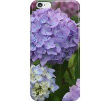 Nantucket Hydrangeas iPhone Case/Skin