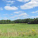 Rural View by Jack Ryan