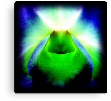American Chakra - Orchid Alien Discovery Canvas Print