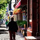 Quaint Street Alexandria VA by Susan Savad