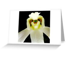 Chef - Orchid Alien Discovery Greeting Card