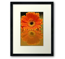 Double Orange Framed Print