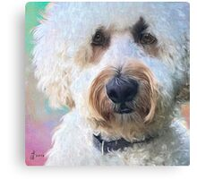 """Beau in Pastels"" Canvas Print"