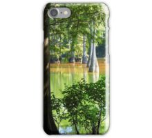 Cypress In Frame iPhone Case/Skin