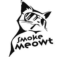 Smoke Meowt Photographic Print