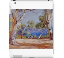 'Storm Out Back' iPad Case/Skin