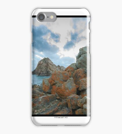 Driftwood on the rocks iPhone Case/Skin