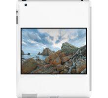 Driftwood on the rocks iPad Case/Skin