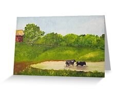 Cows in a Pond Greeting Card