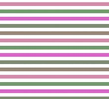 Pink Roses in Anzures 1 Stripes 1H by Christopher Johnson