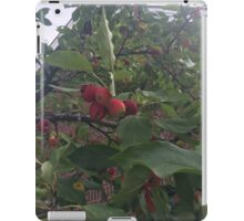 Little red apples iPad Case/Skin