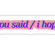 You Said / I Hope (Pink) Sticker