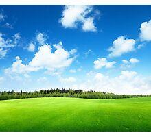 Green Land Photographic Print